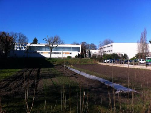 Gymnase KOEBERLE de Sélestat